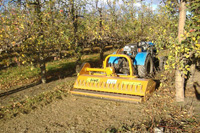 Mulcher for vineyard, orchard and olive grow