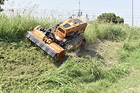 Radio-remote-controlled vehicle